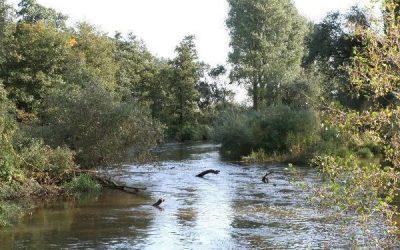 """""""De Roer als landschapsvormer; drie gezichten van een rivier in Midden Limburg"""""""